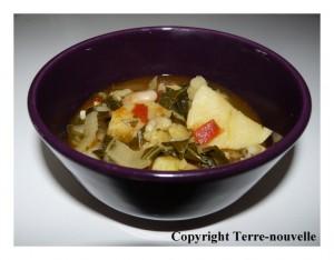potage espagnol