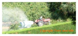 Allergies alimentaires et traitement chimique des fruits et l gumes terre nouvelle - Traitement arbres fruitiers ...