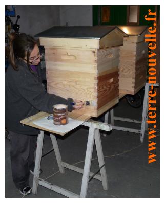 deux ruches et bient t des abeilles terre nouvelle. Black Bedroom Furniture Sets. Home Design Ideas