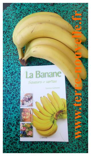 la Banane : ses bienfaits, ses utilisations, son mode de culture. Pour tout savoir sur la banane.