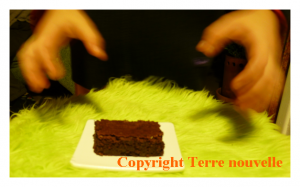 Brownies chocolat noisette et amande, sans morceaux