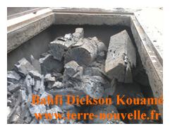 charbon de bois propre