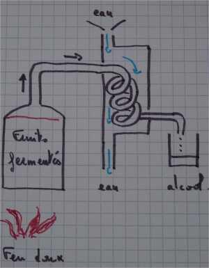 distillation à l'ambic