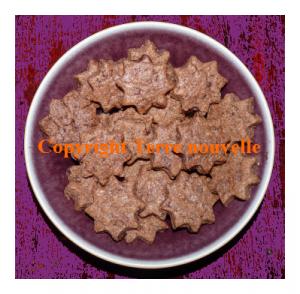 Gâteaux de Sabbat biscuits sablés au chocolat sans oeufs