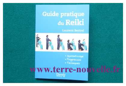 Guide pratique du Reiki : pour bien débuter