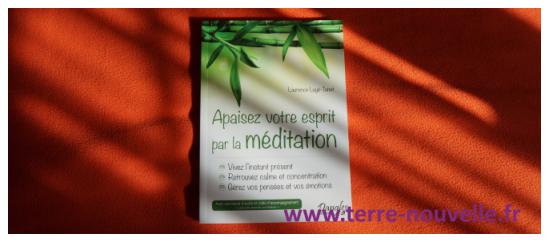 La méditation : c'est pour les mous ou pour les durs ?...