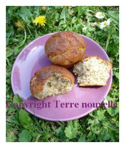 Muffins amande et graines de pavot