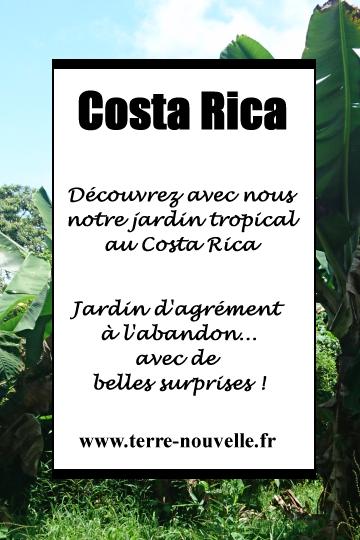 Découvrons ensemble notre jardin tropical au Costa Rica !