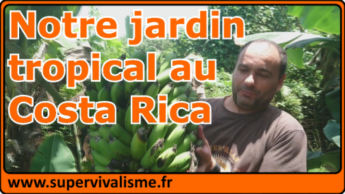On découvre ensemble notre jardin tropical au Costa Rica : un peu à l'abandon mais prometteur !...