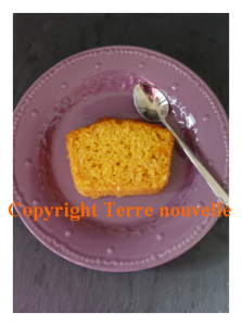 Potimarron : cake sucré