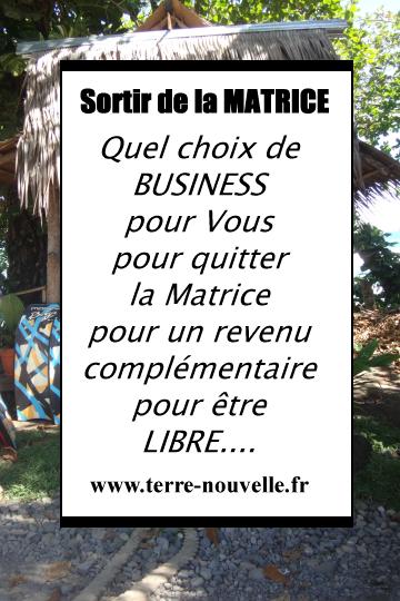Quel choix de business adapté à Vous, pour quitter la Matrice par le haut, pour un revenu complémentaire, pour être LIBRE....