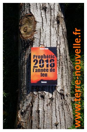 Roman survivaliste de Danny Kada : Prophetic 2018 l'année de feu