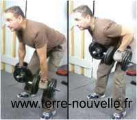 exercices aux haltères pour le dos