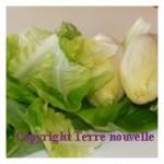 Salade verte améliorée