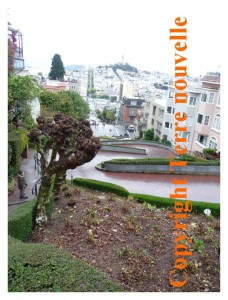 Lombard Street, pittoresque, à San Francisco