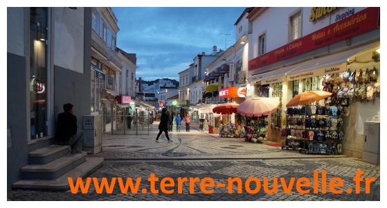 Voyage au Portugal en famille : un repas dans une boulangerie