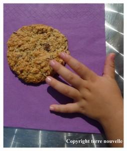 cookies sans beurre sans oeufs