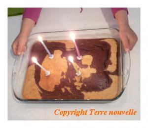 gâteau d'anniversaire marbré chocolat et noix de coco