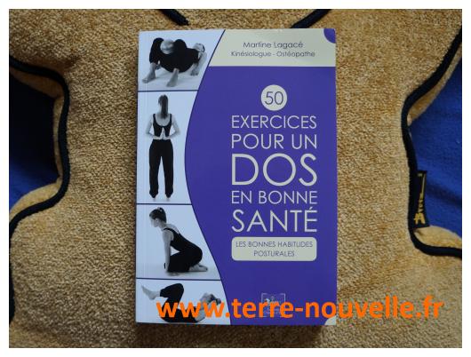 50 exercices pour avoir un dos en bonne santé : retrouver une bonne habitude posturale