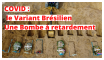 Covid 19 - Le variant Brésilien, une Bombe à retardement