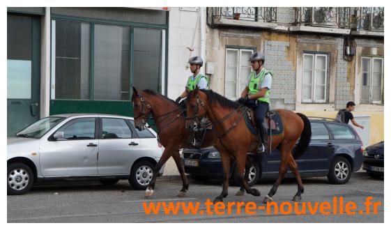 A Lisbonne, capital du Portugal, on peut croiser des policiers à cheval. Une présence qui se veut rassurante.
