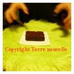 Brownies chocolat noisette amande