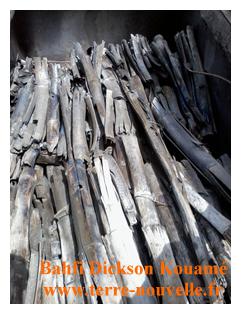 charbon de bambou propre