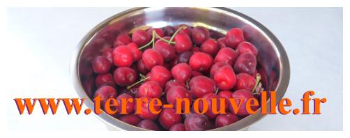 Confiture maison : recette Terre nouvelle de confiture cerise fraise