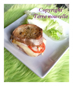 Croque-Monsieur maison