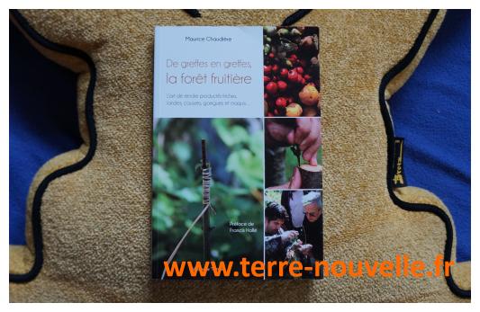 De Greffe en Greffe : faire fructifier une garrigue, une friche, en greffant soi-même ses arbres !