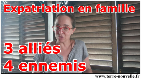 Expatriation : 3 alliés, 4 ennemis