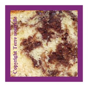 gâteau marbré façon savane Brossard maison