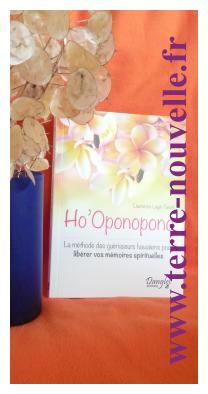 Ho'oponopono, Méthode des guérisseurs hawaïens. Livre et témoignage de Laurence Luyé-Tanet
