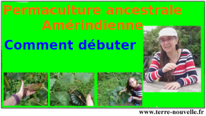 Permaculture ancestrale Amérindienne, comment débuter en permaculture avec les 3 Soeurs ou Milpa