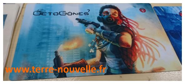 Salon Octogônes à Lyon : convention du jeu et de l'imaginaire, thème 2016 : l'imaginaire post-apocalyptique, l'imaginaire post-effondrement
