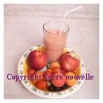 Shake yaourt et fruits
