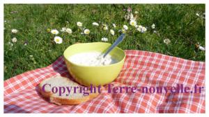 Rillette de thon au fromage frais