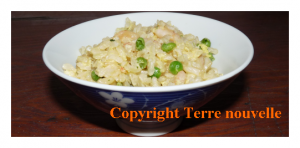 Riz cantonnais sans jambon aux mini crevettes