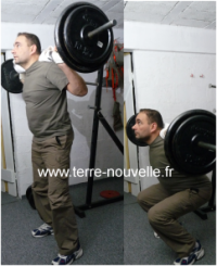 squat musculation à la barre