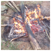 survivalisme stage de survie stage de bushcraft Survivalisme : Stage de survie, stage de bushcraft