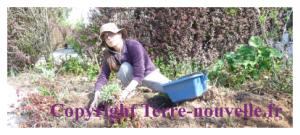 Survivalisme pour les femmes : tâches dévolues aux femmes survivalistes