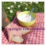 Tartinade de thon et fromage frais